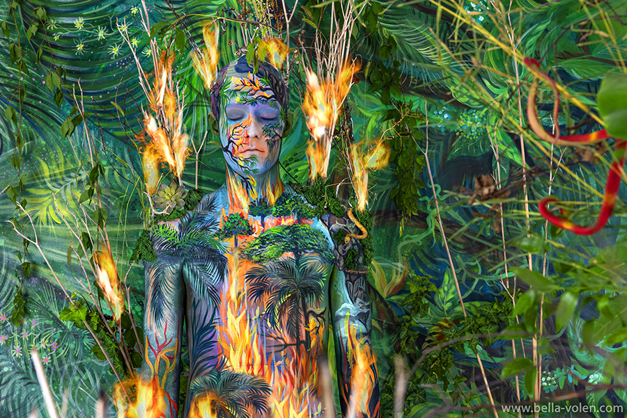 amazon on fire brazil - art project